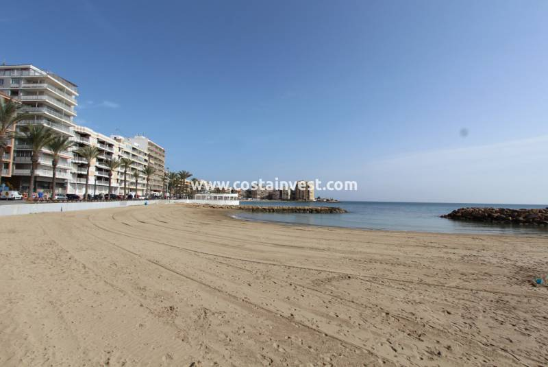 Apartment - Inchiriere - Torrevieja - Playa del Cura