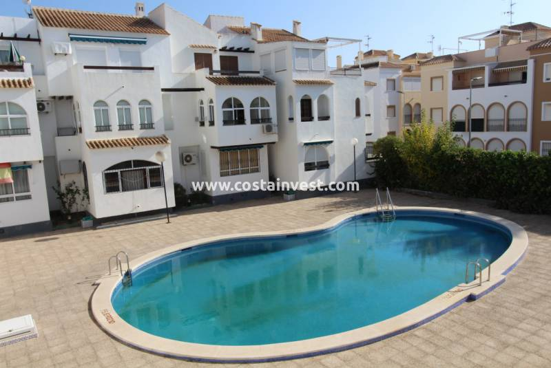 Apartment - Rental - Torrevieja - Playa del Acequión
