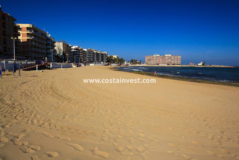 Appartement - De location - Torrevieja - Torrevieja