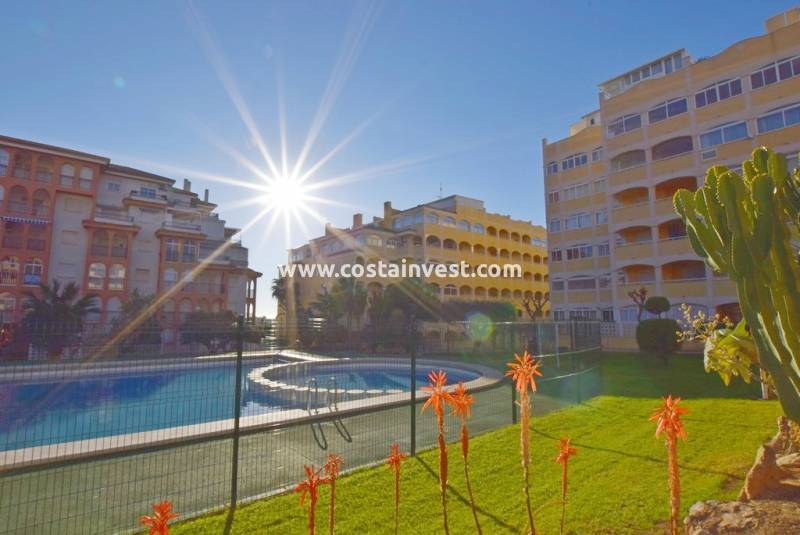 Apartment - New Build - La Mata - Torrelamata