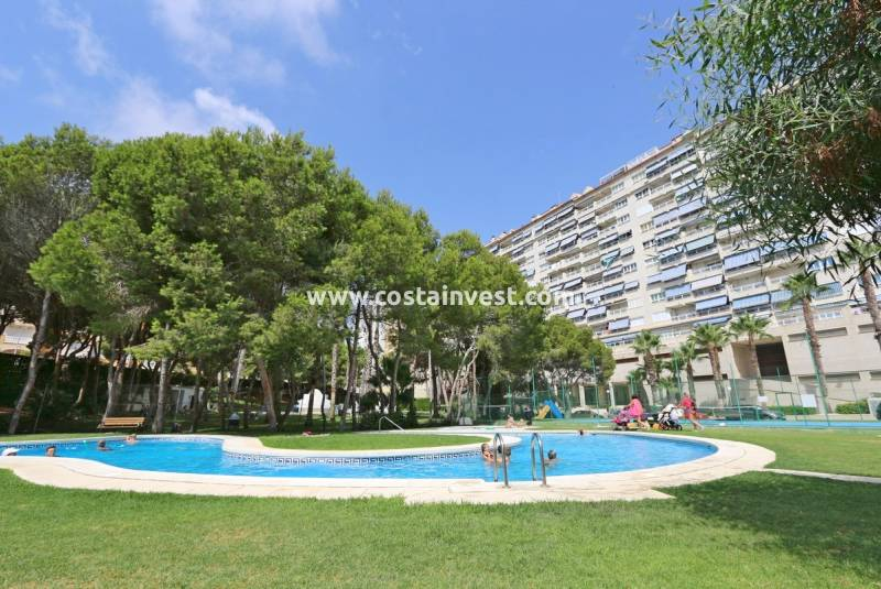 Appartement - De location - Orihuela Costa - Orihuela Costa
