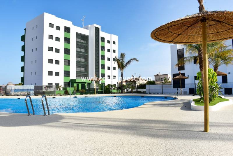 Apartment - New Build - Orihuela Costa - Mil Palmeras