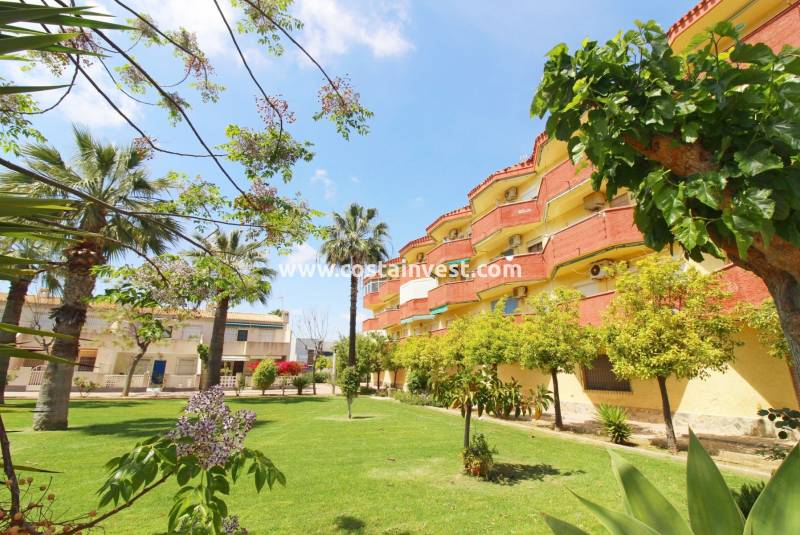 Apartment - Resale - Orihuela Costa - La Regia
