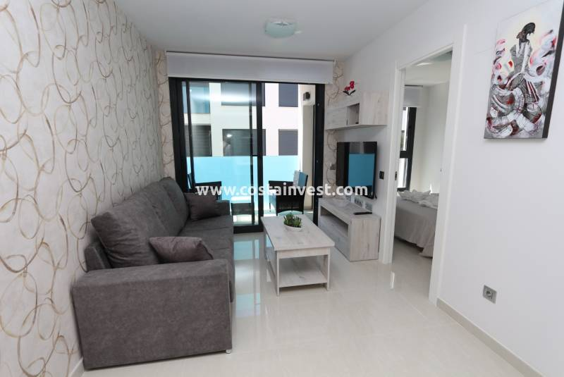 Apartment - Rental - Torrevieja - Torrevieja