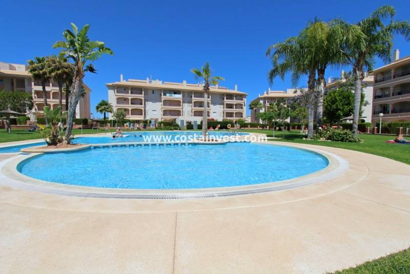 Apartment - Rental - Orihuela Costa - Playa Flamenca