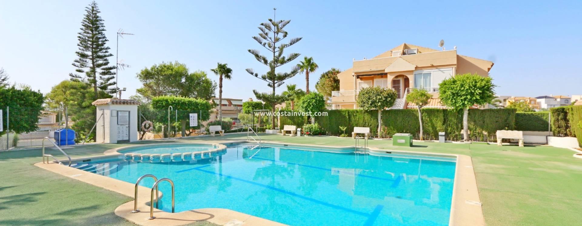alquiler de habitaciones en torrevieja marbella