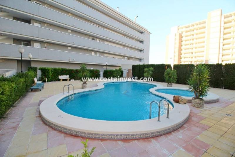 Appartement - Herverkoop - Guardamar del Segura - Harbour