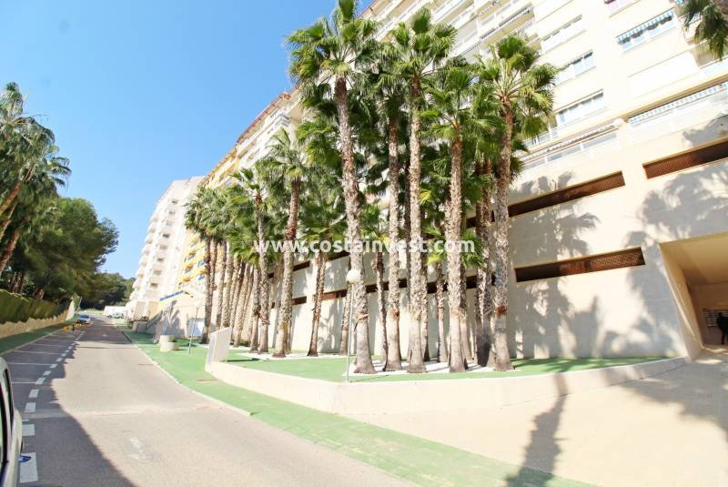 Apartment - Resale - Orihuela Costa - Dehesa de Campoamor