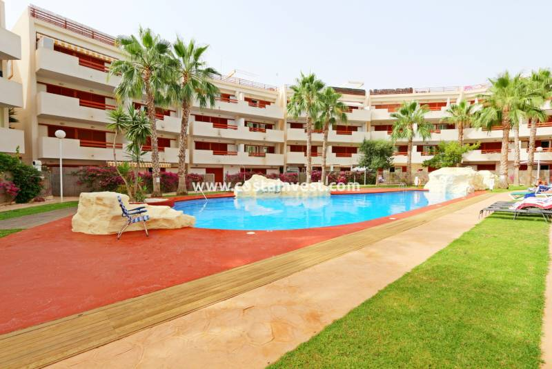 Apartment - Rental - Orihuela Costa - Punta Prima