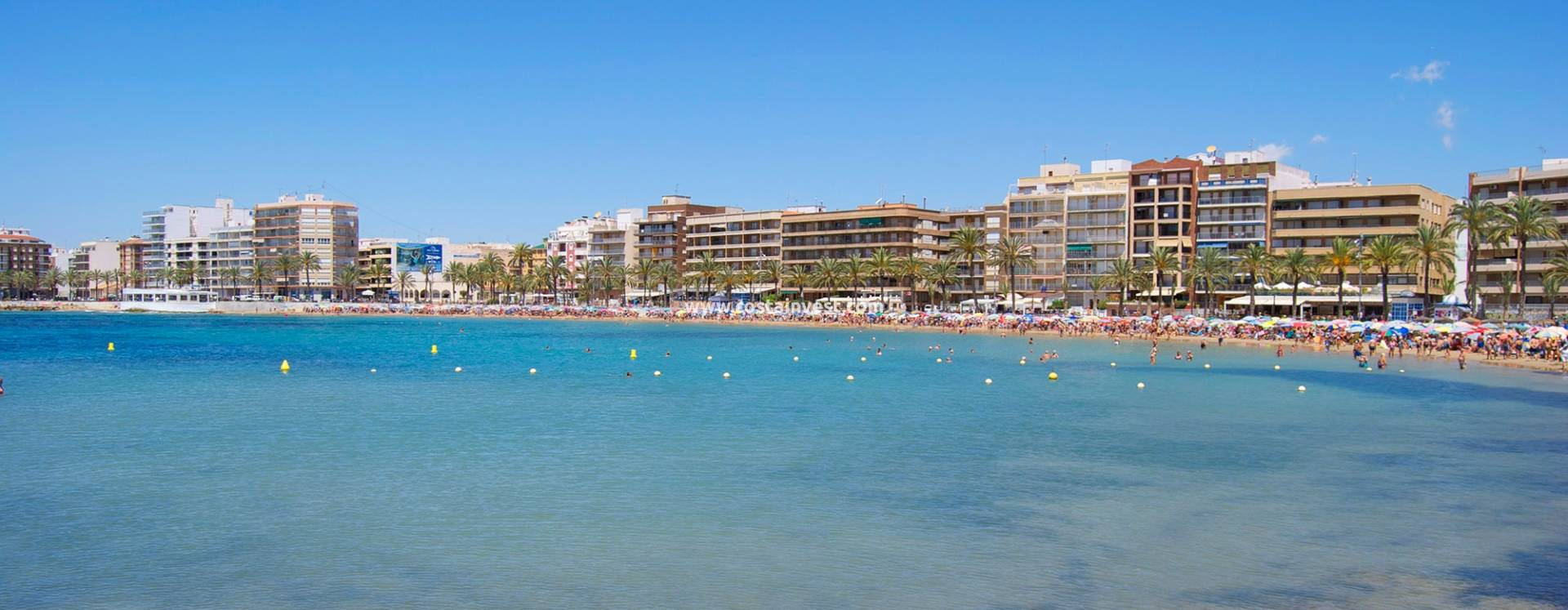 Studio - Resale - Torrevieja - Downtown