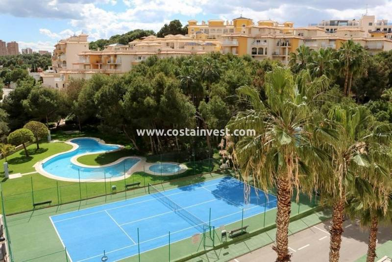 Apartment - Rental - Orihuela Costa - Dehesa de Campoamor
